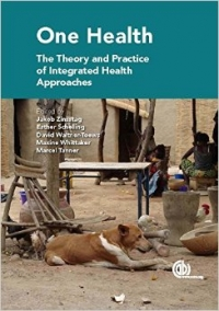 New book: The Theory and Practice of Integrated Health Approach